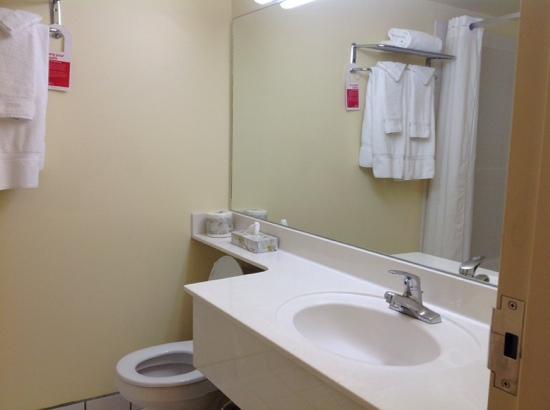 Ramada Plaza Calgary Airport Hotel and Conference Centre: basic bathroom