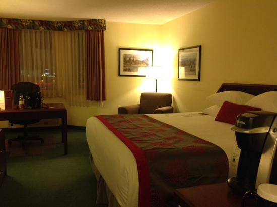 Ramada Plaza Calgary Airport Hotel and Conference Centre: king room