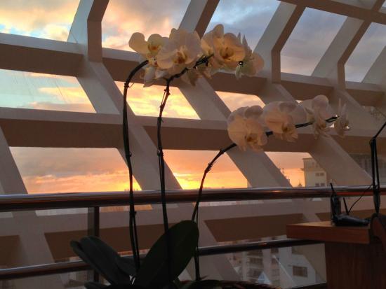 Emiliano Hotel : vista suite cubo