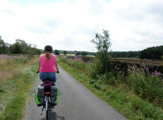 Darwin Forest Country Park: Darley Moor