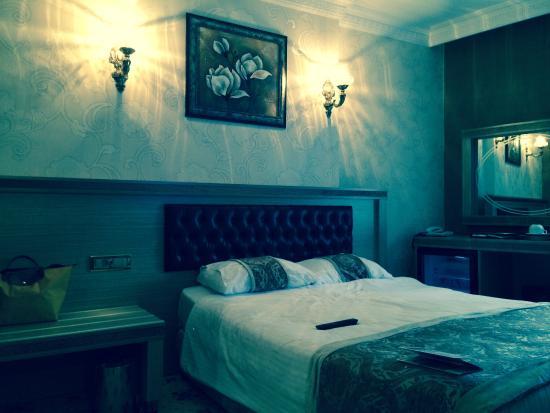 Marmaray Hotel: Hotel room