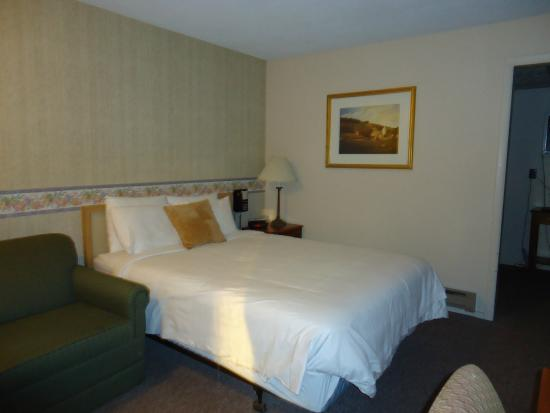 Poolside Bed poolside bed - picture of henniker motel, henniker - tripadvisor
