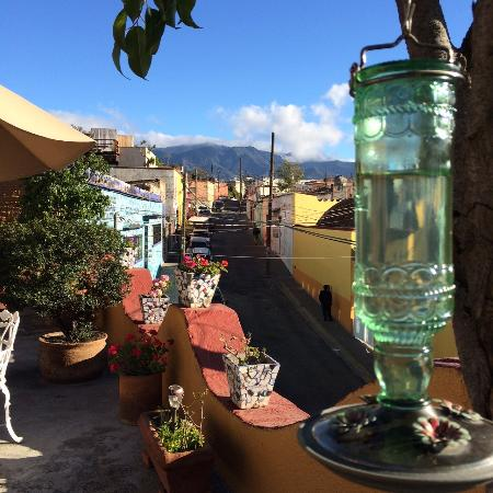 Hotel Azucenas : Rooftop view
