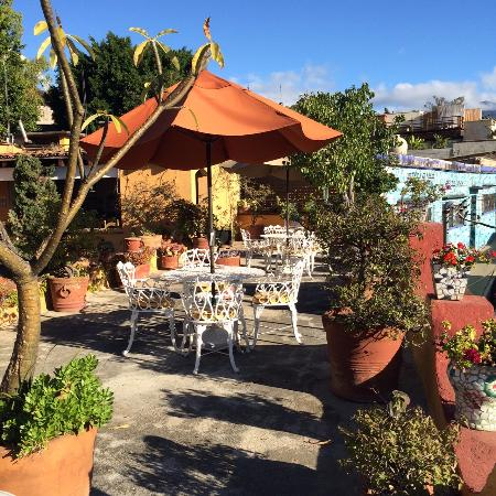 Hotel Azucenas : More of the rooftop