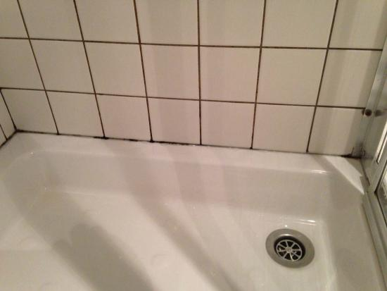 clean mold free shower cabin picture of astoria park hotel spa rh tripadvisor co za how to treat mold in a bathroom how to treat mold in a bathroom