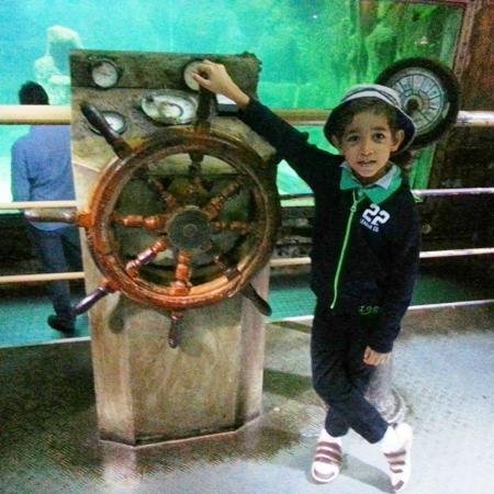 ... - Picture of Sao Paulo Aquarium, Sao Paulo - TripAdvisor