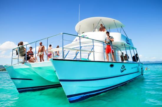 Paradise Island & The Mangroves (Cayo Arena): VIP Paradise Island