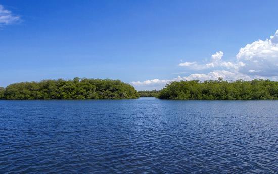Paradise Island & The Mangroves (Cayo Arena): National Park of Montecristi