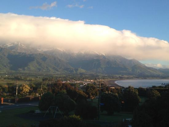 Nikau Lodge : View from our room!