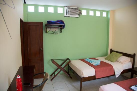 Hotel Los Cactus : 1