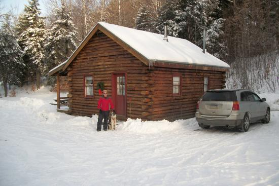 Birch Meadow Luxury Log Cabins & B&B: The Eagle's Nest Back View