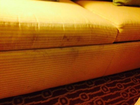 TownePlace Suites Jacksonville Butler Boulevard: Sofa with not sure what happened on it.
