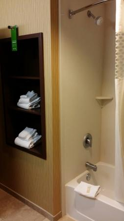 Hampton Inn & Suites Woodstock : Bathroom