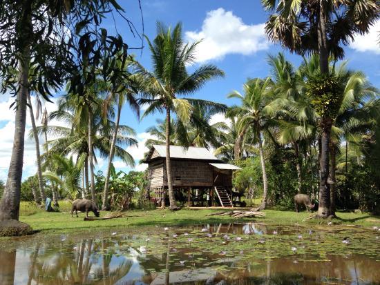 Angkor Tour Services: Cambodia country house