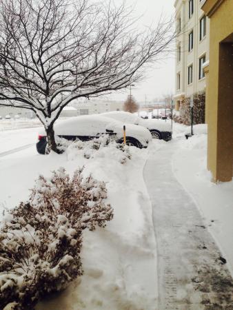 Courtyard Buffalo Amherst/University: Buffalo you got to love it!!!