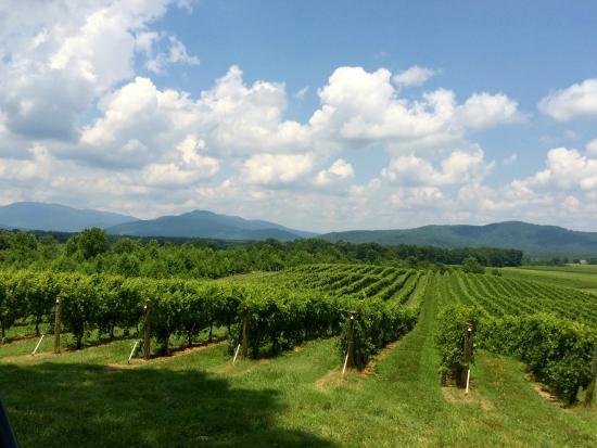 Grace Estate Winery : Mount Juliet Farm