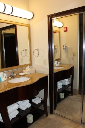 Hampton Inn & Suites Galveston : Nice bathroom
