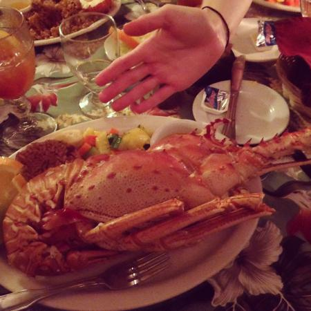 Sebastian's on the Beach: My 2lb. fresh lobster