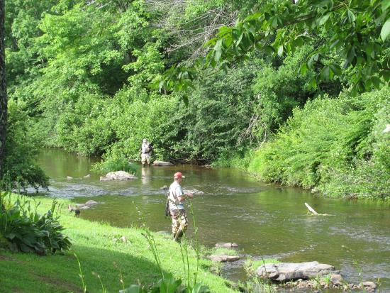 Pineola, Kuzey Carolina: Linville River Fishing