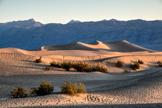 Death Valley National Park, Californië: Mesquite Flat Dunes in the Warm Sunrise Light