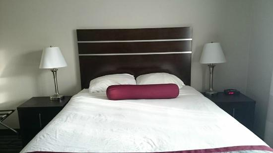 Super 8 Saskatoon Near Downtown: the bed again