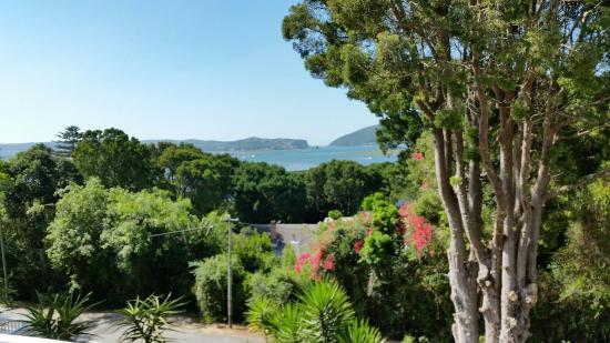 South Villa Guest House: The view