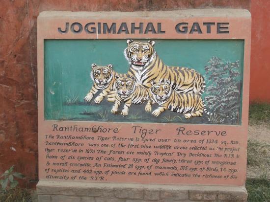 Ranthambore National Park : jogi mahal entrance gate