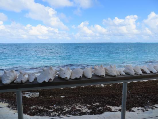 North Caicos : View from Barracuda Beach Bar