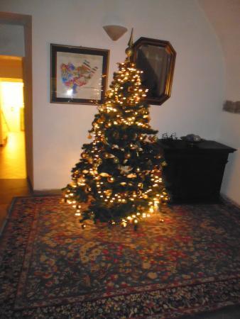 Piccolo Hotel Etruria: albero di Natale