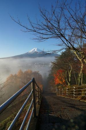 Kawaguchi Sengen Shrine: Fujisan view, taken from the stairs