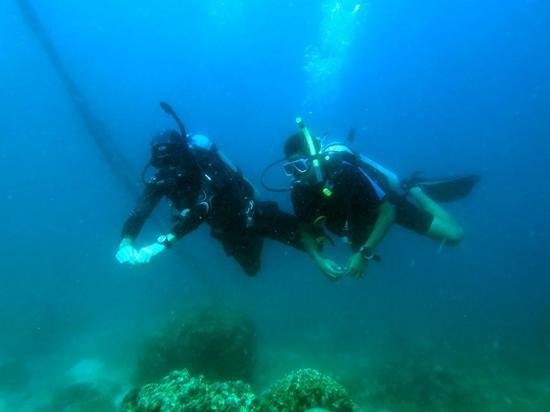 Dive Under The Sun: PADI Open Water Diver Course Mactan, Philippines