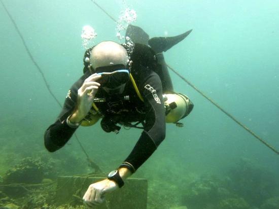 Dive Under The Sun: Sidemount Diving Mactan Island