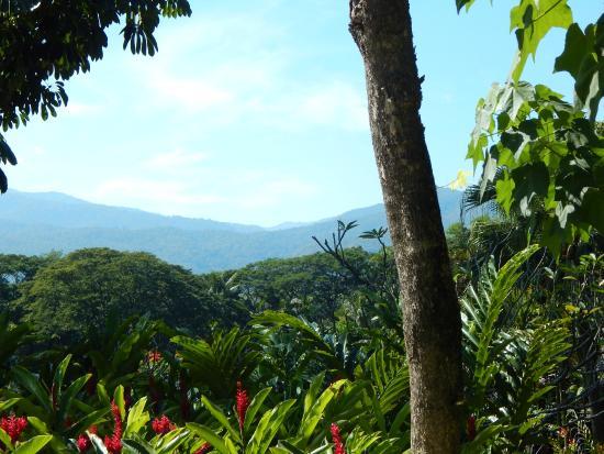 Lana Thai Villa: Surrounding view is breathtaking