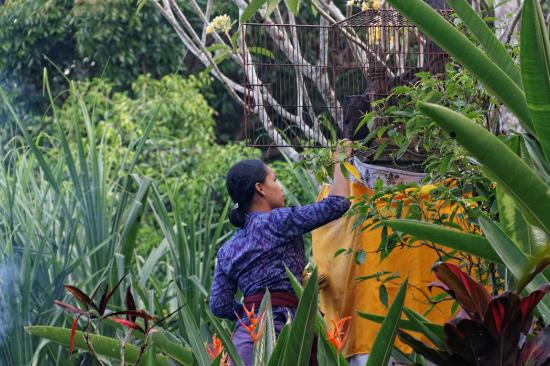 Alam Indah: Mise en place des offrandes