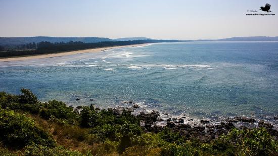 Atithi Parinay Homestay : Aarey beach