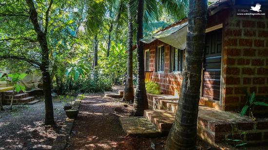 Atithi Parinay Homestay : the cottage we stayed at
