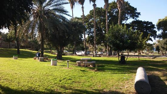 Winter at Ashkelon park