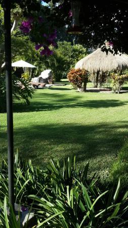 Real Plaza Hotel Suites : Los jardines muy bonitos para relajación.