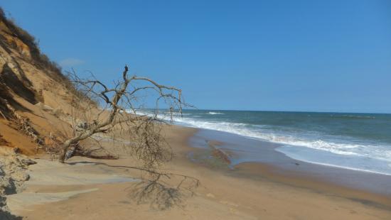Imvubu Lodge : The private beach