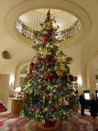Christmas At The Ritz London.The Magnificent Christmas Tree In The Foyer Picture Of The