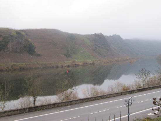 Bremm, ألمانيا: uitzicht op de rivier