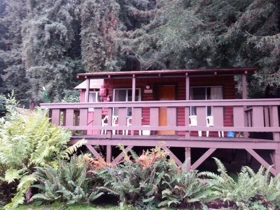 Fern River Resort Motel: Cabin