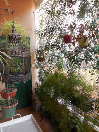 Artemisia B&B : terrazzino della cucina