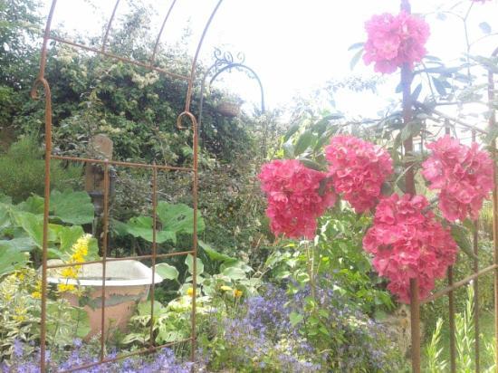 Jardin picture of auberge du petit morin la ferte sous for Auberge du jardin