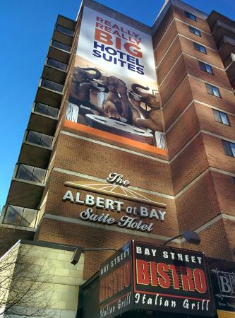 Albert at Bay Suite Hotel: Big Promises