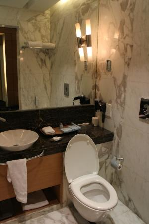 Radisson Blu Marina Connaught Place: The Bathroom