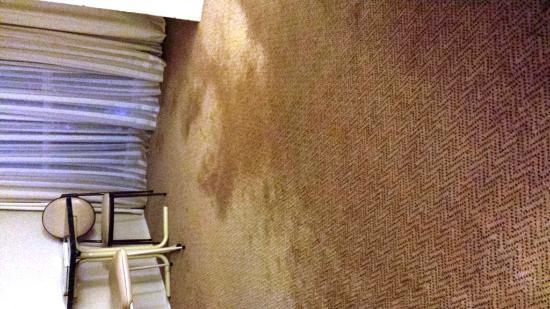 Ibis Styles Canberra Narrabundah : Carpet Room 2