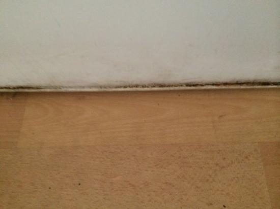 Ingenia Holidays One Mile Beach: Dirt in the fridge door