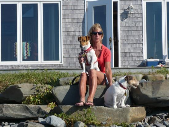 Bayside Farm and Cottages: Happy dogs