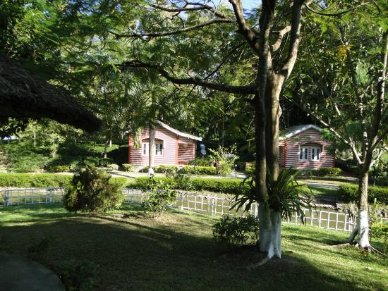 Dhanshree Resort: View of cottages from outside